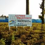 大江戸線土支田駅の駅前広場(駅ないのに・・)