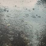 夏の雨にレインポンチョはやばいかも
